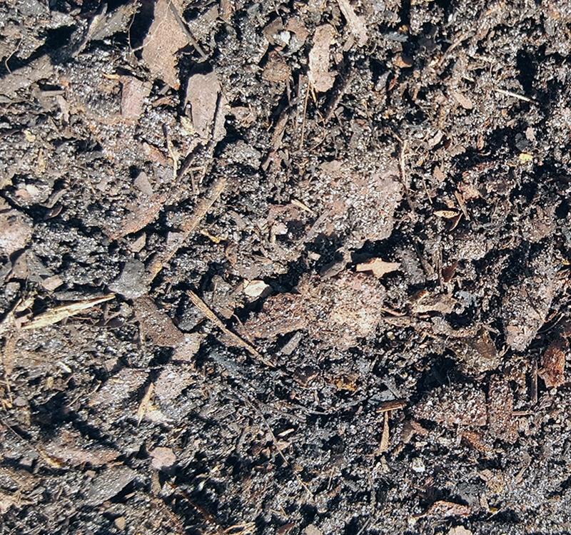 Potting Soil Improved
