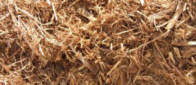 grade a cypress bark 3cu