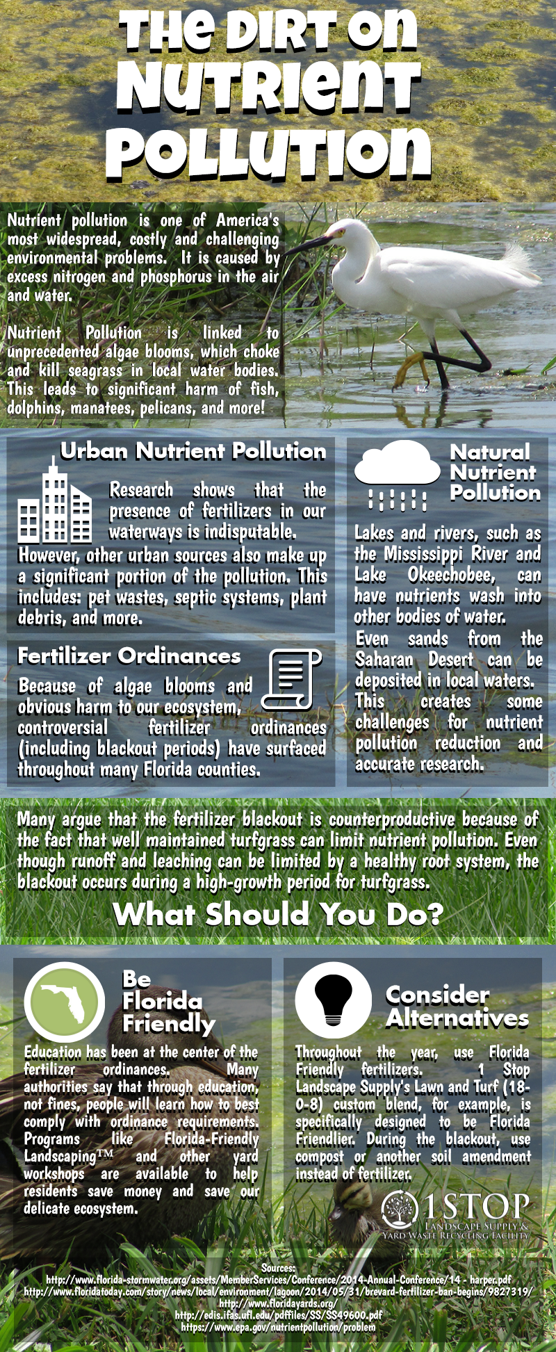 Nutrient Pollution