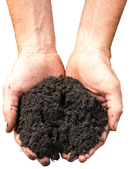 compost or topsoil landscape supplies in hands