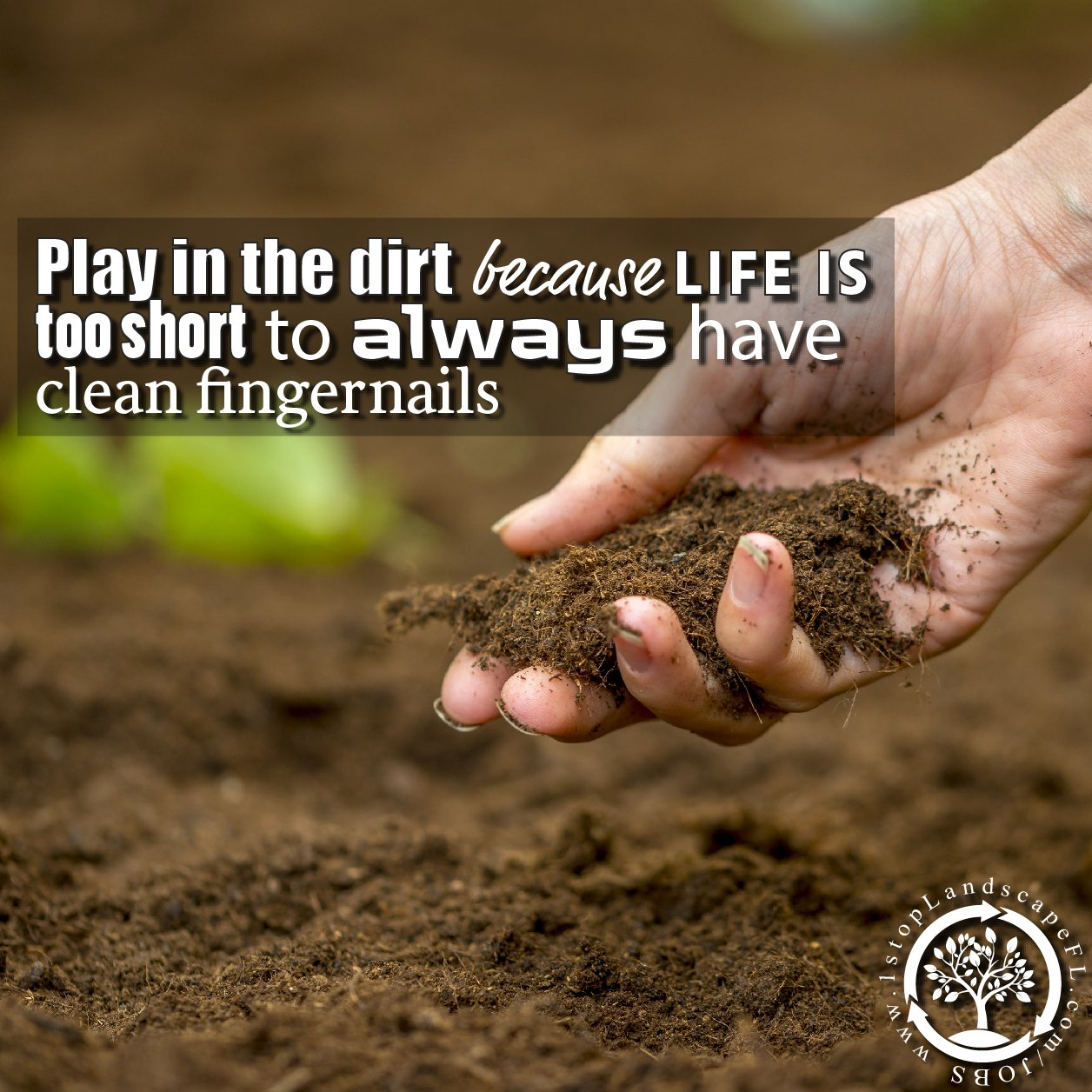 play-in-the-dirt