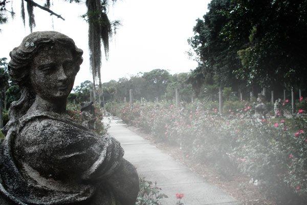 florida-gardens-mable-ringling-fog-path