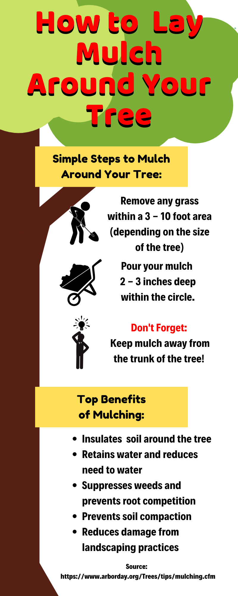 how to lay mulch infographic, mulching how to guide, mulch around trees infographic, mulch benefits list, tree, instructions