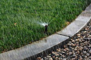 sprinkler, signs of overwatering, brown grass, rocks, rain