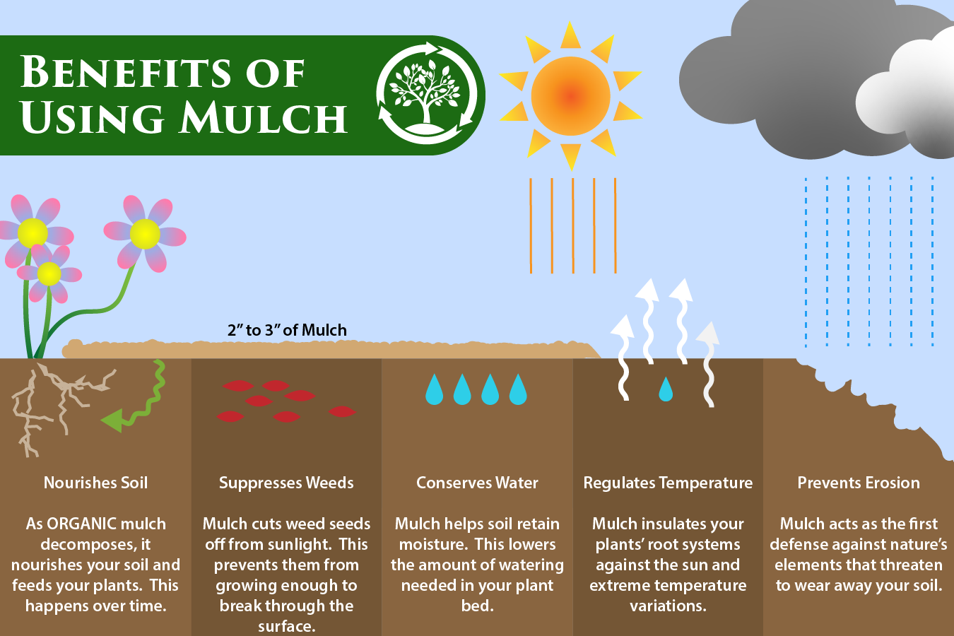 benefits of mulch, infographic, four benefits