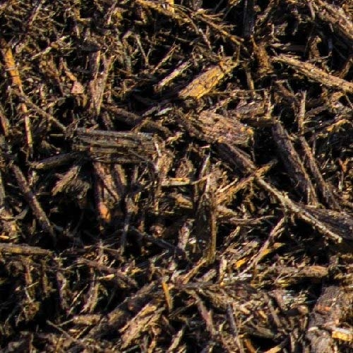 chocolate-mulch